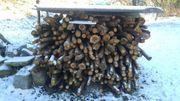 Brennholz Anmachholz Kleinholz 0 8