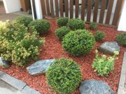 Gartenpflege Gartenarbeit