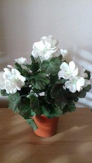 Kunstblume weiße Geranie zu verschenken