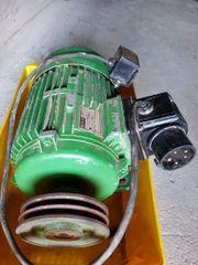 Posch Holzspalter Motor
