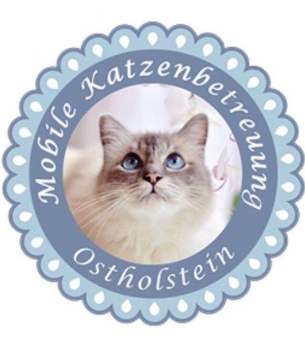 Möbel Eutin mobile katzenbetreuung ostholstein in eutin tierbetreuung kaufen