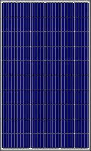 PV Modul - Amerisolar AS-6P30 280Wp