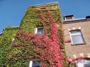 Apartment Köln Ehrenfeld