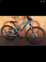 Cube Mountainbike 29 Zoll 19