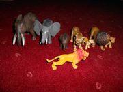 Verschiedene Wildtiere