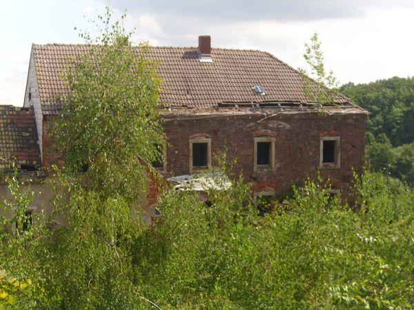 Haus Kauf Beratung In Berlin 1 Familien Häuser Kaufen Und