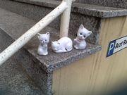 Katzen aus Porzellan