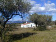 Werden Sie Olivenbauer in Spanien