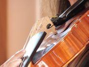 Geigerin Violinistin für Trauung Hochzeit