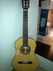 Hochwertige Gitarre mit