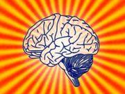 Psychologie Soziologie Pädagogik
