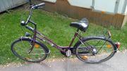 fahrrad Bismarck 26