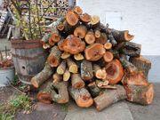 Zwetschgenholz zum Drechseln