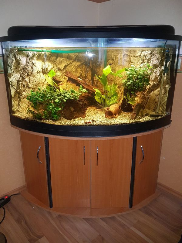 eck aquarium kaufen eck aquarium gebraucht. Black Bedroom Furniture Sets. Home Design Ideas