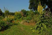 Suche Garten im