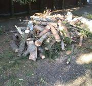 Brennholz zvk.