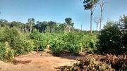 Brasilien schönes Grundstück