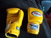 Kickboxhandschuhe