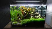 Aquarium 60x30x40cm 72L