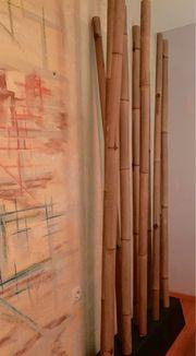 Schöne Bambusrohre Raumtrenner