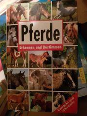 11 Pferdebücher