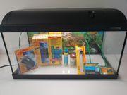 Aquarium 54L - Komplett-Set mit Neuware