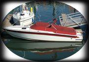 Motorboot Formula LS223