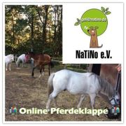 Die online Pferdeklappe