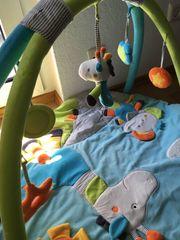 Baby Krabbeldecke Spielbogen