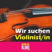 Geiger in Violinist in gesucht
