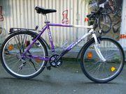 Trekking - Fahrrad von GIANT mit