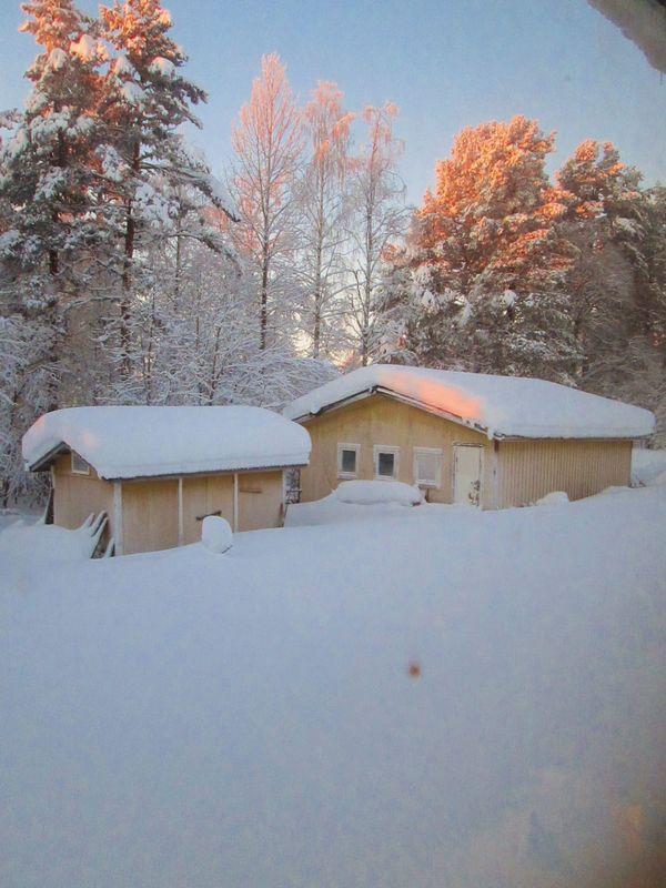 Urlaub in Lappland » Ferienimmobilien Ausland