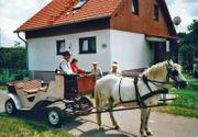 Ferienwohnung im Müritz-Nationalpark Granzin