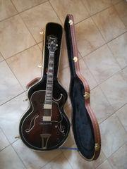 Gitarre IBANEZ