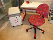 MOLL Schreibtisch Rollcontainer Stuhl