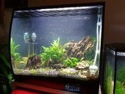2x Nano Aquarium Fluval Flex