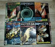Verschiedene Reptilia Terarium Reptilien