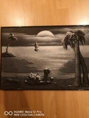 3D Wand bild Kamel und