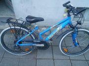 Fahrrad Triumph Sport