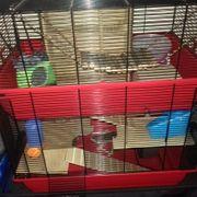 Käfig für Zwerghamster oder Mäuse