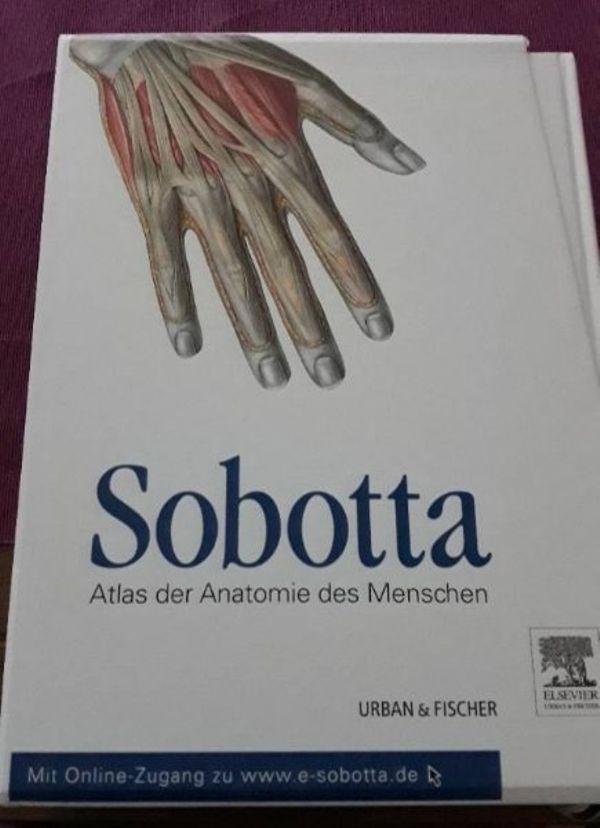 Wunderbar Anatomie Malbuch Online Bilder - Framing Malvorlagen ...