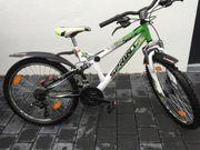 SPRINT Mountainbike / Fahrrad,