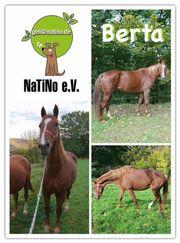 Berta - ausdrucksstarke, sanfte