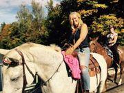 Reitbeteiligung 2 Pferde