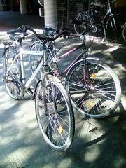 Herren und Damen Fahrrad
