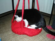 neue - rote Katzenschaukel*