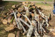 brennholz gute 5 RM Birke