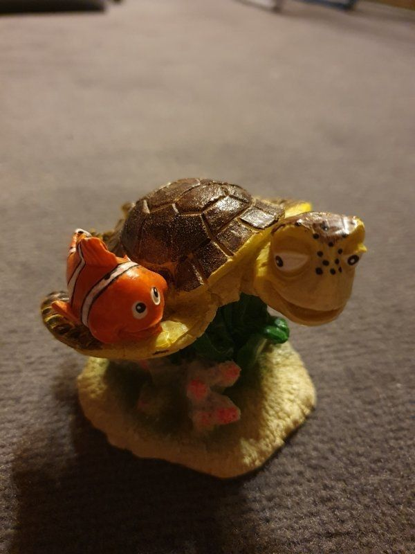 Aquarium Deko Zubehor Findet Dorie Nemo Taucher Zuchtkasten Brutkasten Heppenheim Aquaristik Deine Tierwelt De
