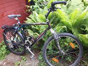 Mountainbike Marke Spezialized
