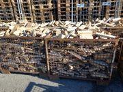 Brennholz Buche 30 Euro pro